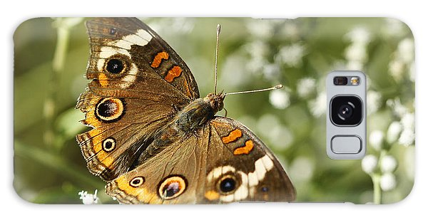Common Buckeye Butterfly On White Thoroughwort Wildflowers Galaxy Case