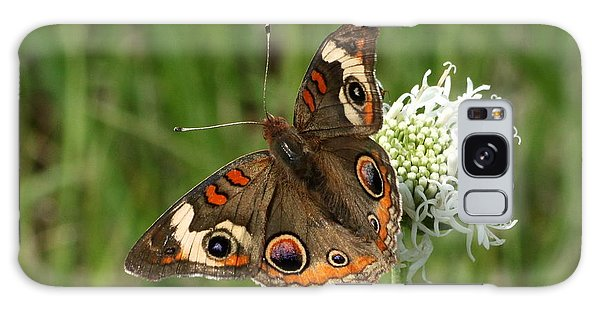 Common Buckeye Butterfly On Wildflower Galaxy Case