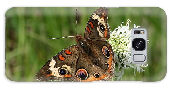 Common Buckeye Butterfly On Wildflower Galaxy Case by Sheila Brown
