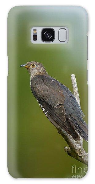 Common Cuckoo Galaxy Case