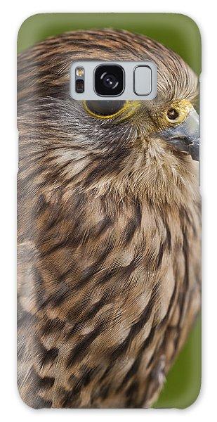 Common Kestrel Falco Tinnunculus Galaxy Case by Gabor Pozsgai