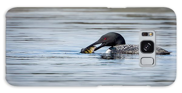 Common Loon Galaxy Case by Bill Wakeley