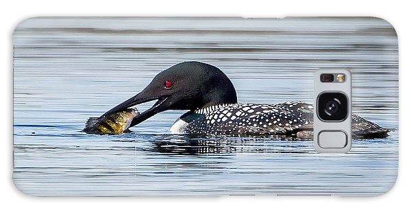 Common Loon Square Galaxy Case by Bill Wakeley