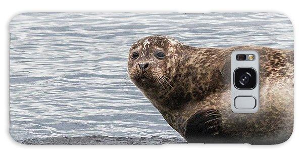 Common Seal Portrait Galaxy Case