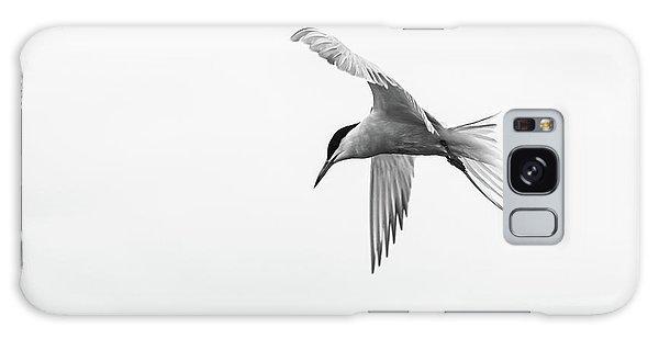 Common Tern Galaxy Case