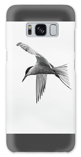 Common Tern Galaxy Case