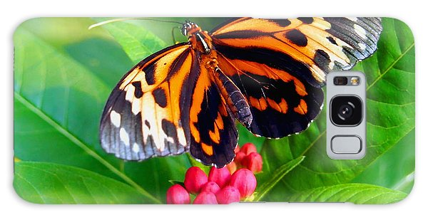 Common Tiger Glassywing Butterfly Galaxy Case by Amy McDaniel