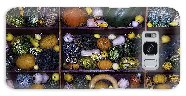 Gourd Galaxy Case - Compartments Of Gourds by Garry Gay