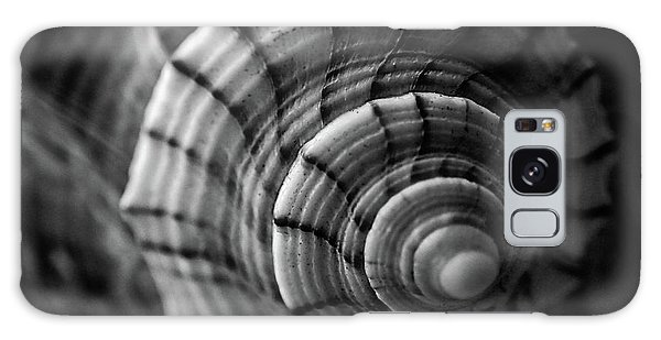 Conch Shell In Black And White Galaxy Case