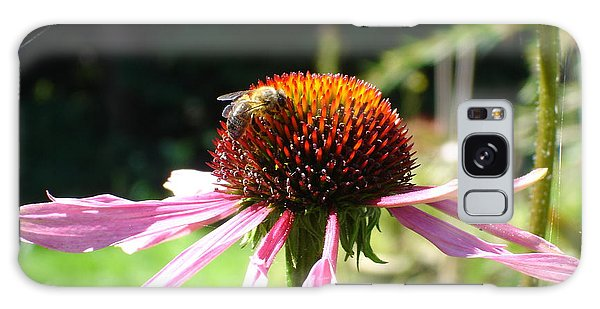 Cone Flower And Honey Bee Galaxy Case