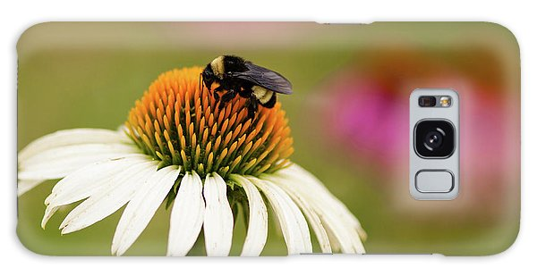 Coneflower And Bee Galaxy Case