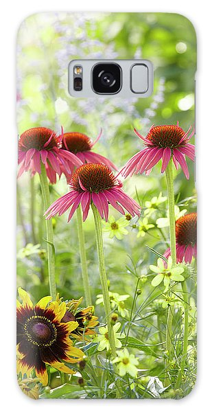 Coneflower Scene Galaxy Case