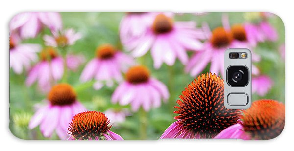 Coneflowers Galaxy Case by David Chandler
