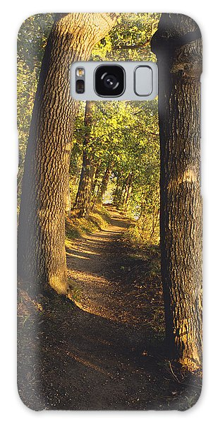 Conference Point Path - Lake Geneva Wisconsin Galaxy Case
