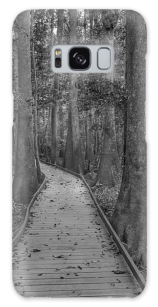 Galaxy Case featuring the photograph Congaree 2017 03 Bw by Jim Dollar