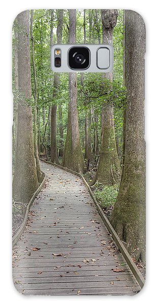 Galaxy Case featuring the photograph Congaree 2017 03 by Jim Dollar