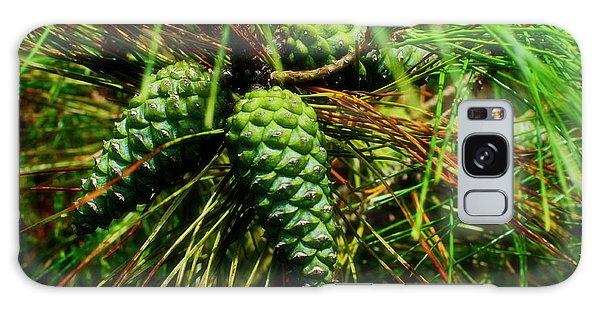 Conifer Fruit Galaxy Case