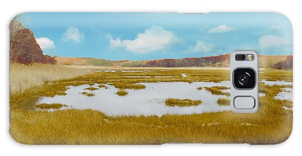 Connecticut Salt Water Marsh Galaxy Case