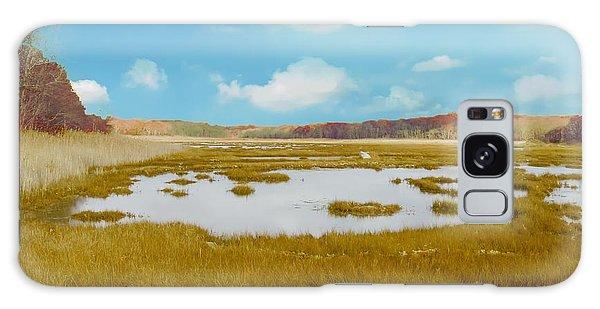 Connecticut Salt Water Marsh Galaxy Case