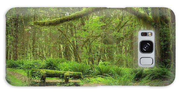 Contemplative Rain Forest Galaxy Case