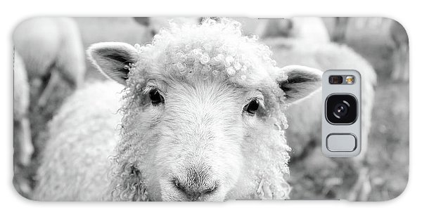 Sheep Galaxy S8 Case - Contentment by Pixabay