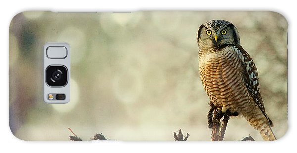 Convenient Perch Galaxy Case by Heather King