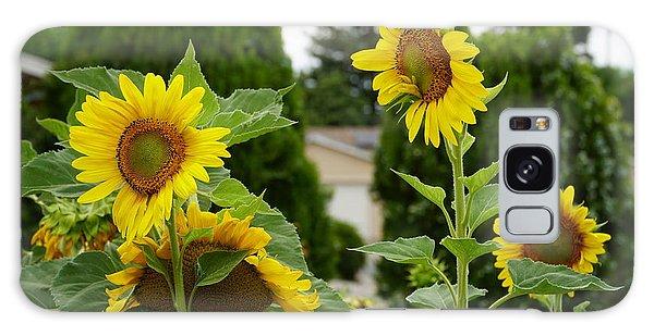 Conversing Sunflowers Galaxy Case
