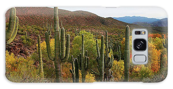 Coon Creek With Saguaros And Cottonwood, Ash, Sycamore Trees With Fall Colors Galaxy Case by Tom Janca