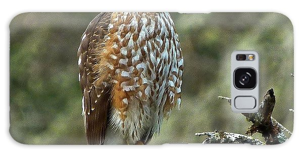 Coopers Hawk Galaxy Case