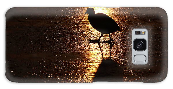 Coot Walks On Golden Ice  Galaxy Case
