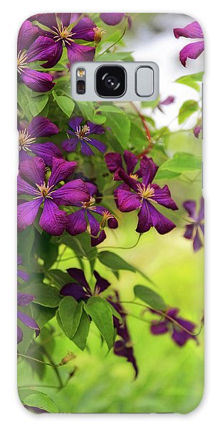 Copious Clematis Galaxy Case