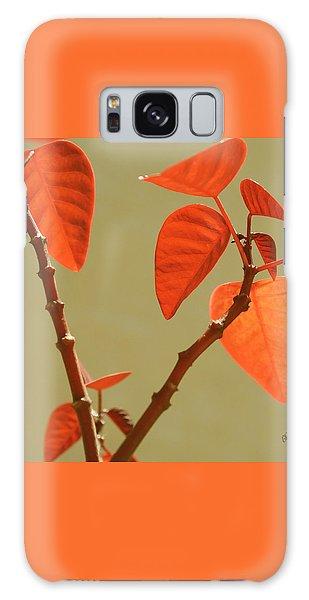 Copper Plant Galaxy Case