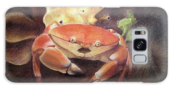 Coral Crab Galaxy Case