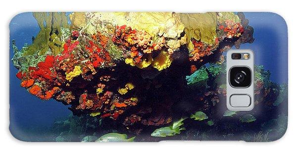 Coral Reef Scene, Calf Rock, Virgin Islands Galaxy Case