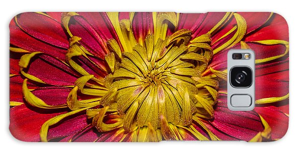 Core Of The Flower Galaxy Case