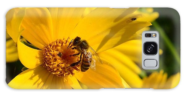 Coreopsis Beauty And The  Bee. Galaxy Case