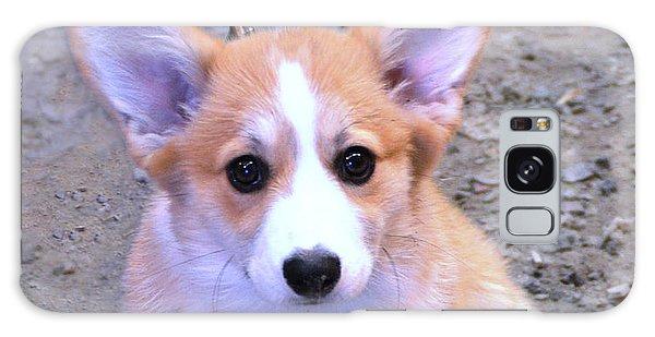 Corgi Puppy Galaxy Case