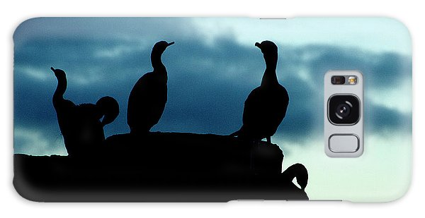 Cormorants In Silhouette Galaxy Case by Victoria Harrington
