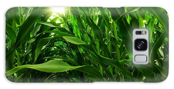 Corn Field Galaxy S8 Case