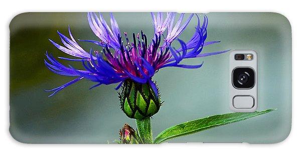 Cornflower Galaxy Case by Rodney Campbell