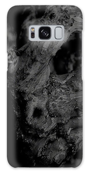 Corpses Fossil Galaxy Case