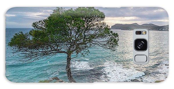 Costa De La Calma Tree Galaxy Case