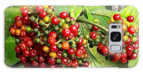 Costa Rican Berries Galaxy Case