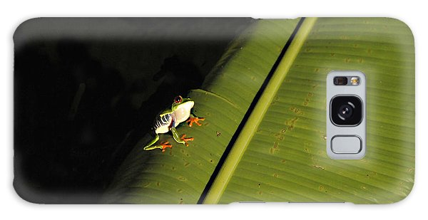 Costa Rica Red Eye Frog II Galaxy Case