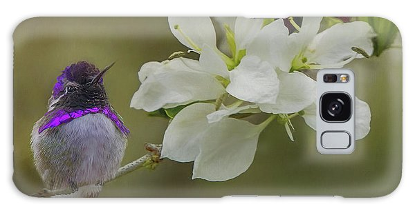 Costas Hummingbird On An Anacacho Orchid Branch Galaxy Case