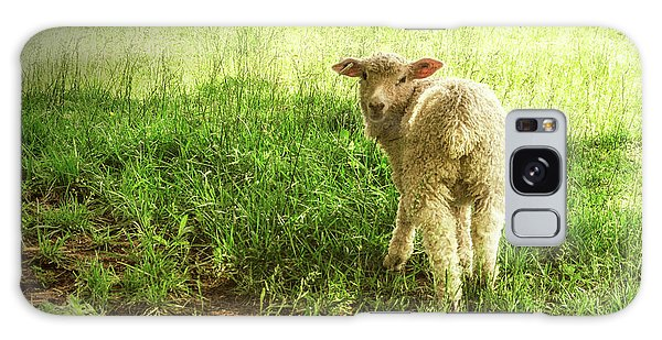 Cotswold Sheep Galaxy Case