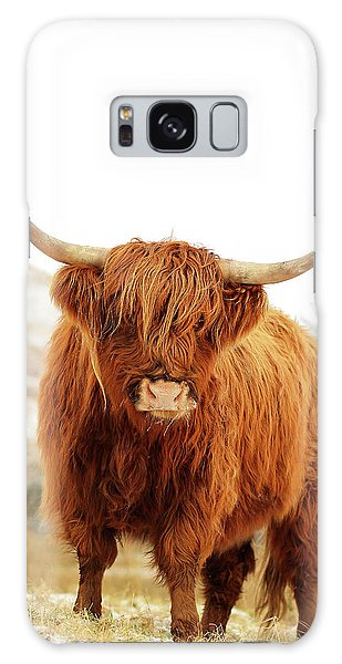 Bull Art Galaxy Case - cottish Highland Cow Loch Lomond by Grant Glendinning