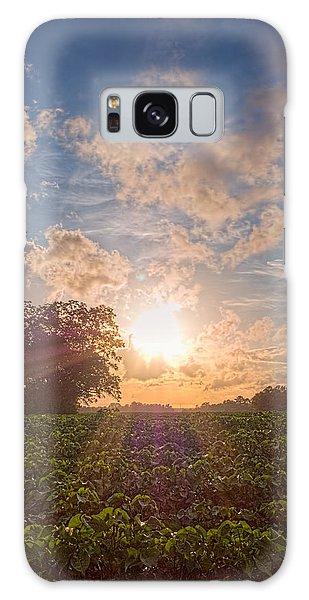 Cotton Field Sunset Galaxy Case