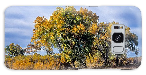 Cottonwood #1 Tree On Ranch Land In Colorado Fall Colors Galaxy Case