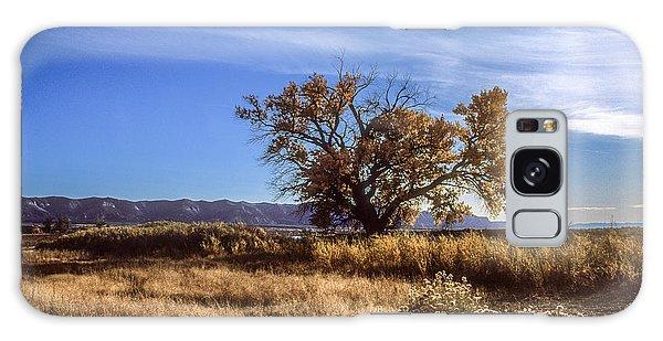 Cottonwood #2 Colorado Ranch Land Montezuma Valley Colorado Mesa Verde Galaxy Case by John Brink